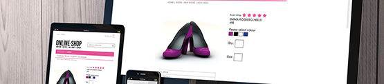 Mobile Commerce Usability